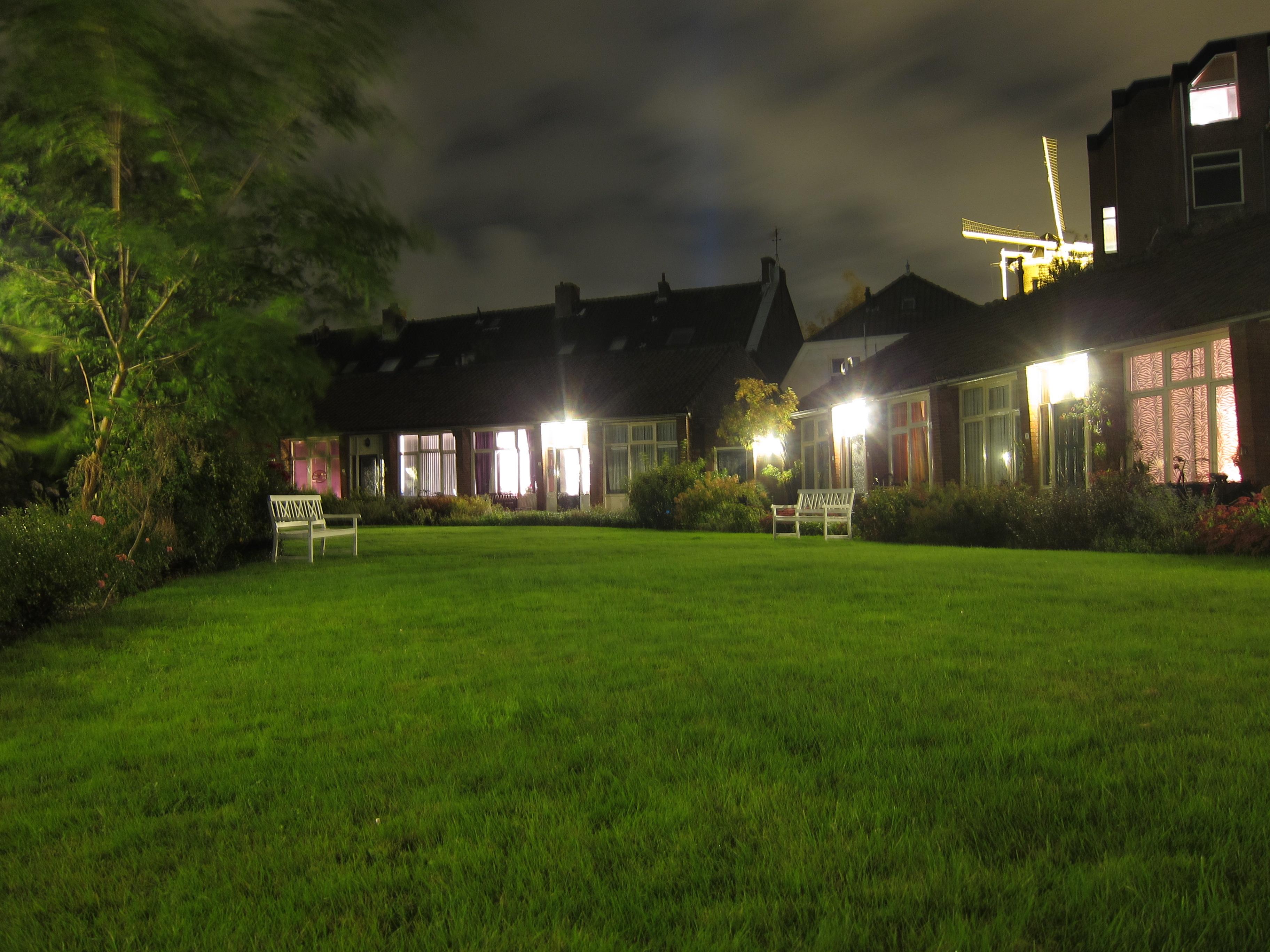 Garden foldedcranes for A night at the garden