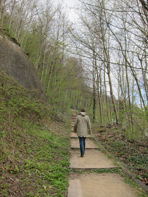 Steps, trees, Luxembourg defences