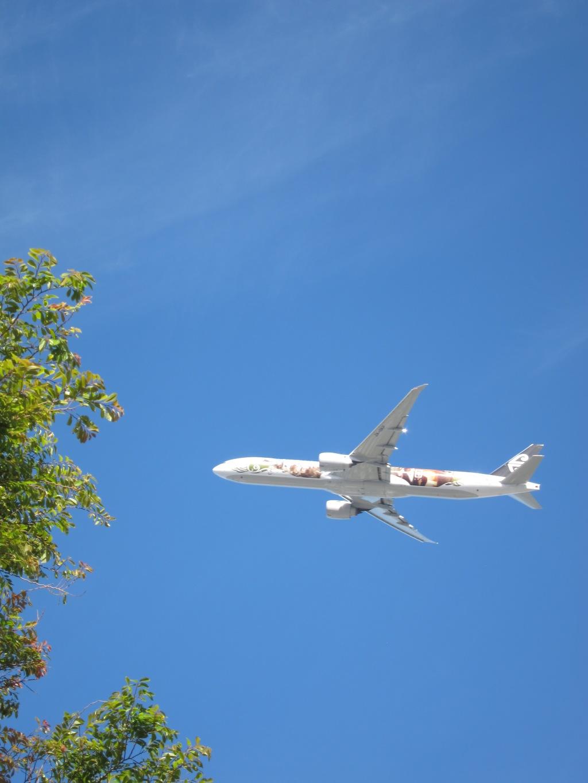 Air New Zealand 777 Flyover