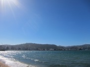Nice day, spoiled by wind (Wellington special)