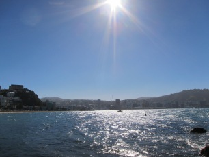 Looking back towards the city from Oriental Bay