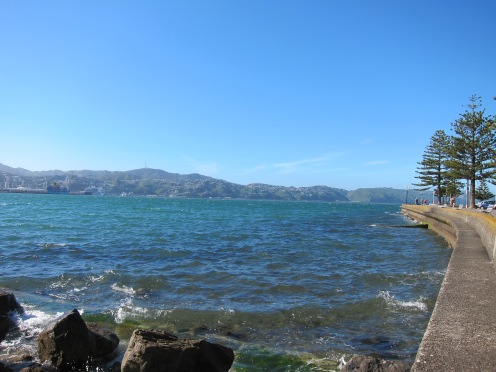 Looking from Oriental Bay towards Khandallah