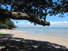 The Beach, French Bay, TItirangi, Auckland